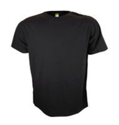 Mens Short Sleeved T-Shirt